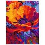Color Kit Мозаичная картина Красный мак (MO046) 30х40 см