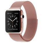 Lemon Tree Ремешок для часов Apple Watch (milano, металлический браслет, магнитная застежка, 42 мм)