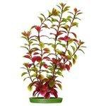 Искусственное растение Marina Red Ludwigia