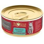 Корм для кошек Molina (0.08 кг) 1 шт. Консервы для кошек Цыпленок с манго в соусе