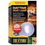 Лампа 100 Вт Exo Terra Daytime Heat (PT2111)