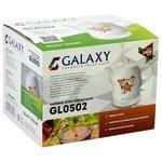 Купить Чайник Galaxy GL0502