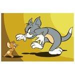 "ВанГогВоМне Картина по номерам ""Том и Джерри 2"" 20х30 см (SX 10004)"