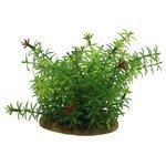 Искусственное растение ArtUniq Элодея 15 см