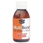 Inform Nutrition MultiBoost