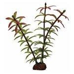 Искусственное растение ArtUniq Элодея красно-зеленая 10 см, набор 6 шт