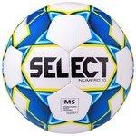 Футбольный мяч Select Numero 10 IMS 810508 (2019)