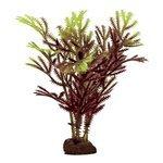 Искусственное растение ArtUniq Хоттония коричнево-желтая 10 см, набор 6 шт