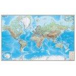 DMB Физическая карта Мира с границами 1:15 (293)